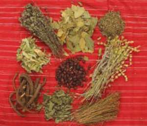 Herbalists call for assistance